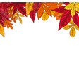 border with autumn leaves design element for vector image vector image