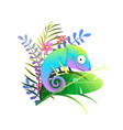 chameleon lizard in exotic tropical nature vector image