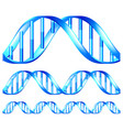 dna isolated set vector image