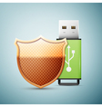 Green usb flash drive with shield icon isolated on vector image vector image