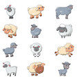 sheep cute lamb farm iicons set cartoon style vector image