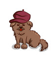 small dog in beret vector image vector image