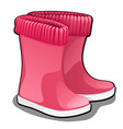 stylish pink rubber boots or wellingtons isolated vector image vector image