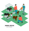 animal rescue isometric background vector image vector image