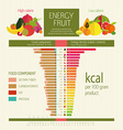 Basics dietary nutrition vector image