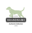 dog handdrawn logo isolated on white background vector image