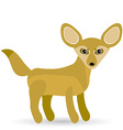 Funny Fennec Fox Cute on a white background vector image vector image