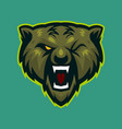green bear roaring mascot logo vector image vector image