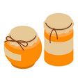 honey jar icon isometric style vector image vector image