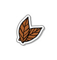 tobacco leaves doodle icon vector image vector image