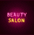 beauty salon neon text vector image vector image