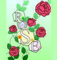 color roses with the inscription rose letters vector image vector image