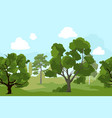 forest landscape with different green trees and vector image