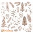 Hand drawn fir and pine branches fir-cones
