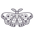 moth with ornaments on wings magical creature vector image vector image