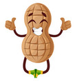 peanut is happy on white background vector image