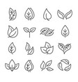 selection black and white sketched eco leaves vector image