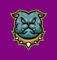 bulldog head mascot vector image vector image
