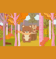 cute bear and squirrel animal forest hello autumn vector image vector image