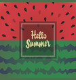 hello summer background with watermelon vector image vector image