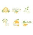 set organic and natural food labels vector image