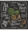 whole hazelnut logo design template nut vector image