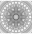 mandala floral decorative ethnic element adult vector image