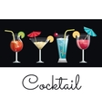 collection cocktail glass umbrella and lemon vector image vector image