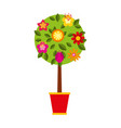 cute tree in pot icon vector image