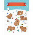 happy pets chow-chow year of dog vector image