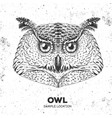 hipster bird owl hand drawing muzzle of bird owl vector image vector image