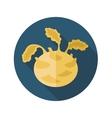 Kohlrabi flat icon Vegetable vector image vector image