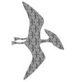 pteradactyl vector image vector image