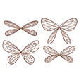 Simple sketches of fairy wings