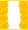 yellow marigold border vector image vector image