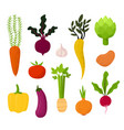 all kind vegetables beet tomato vector image vector image