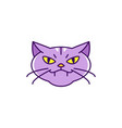 cat witch icon angry cat colorful flat halloween vector image