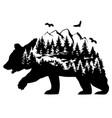 fantasy bear vector image vector image