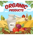 Farm Organic Vegetables Background vector image