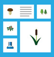 flat icon ecology set of cascade cattail berry vector image vector image