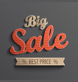 Inscription big sale for banner vector image vector image