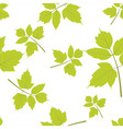 maple leaf seamless pattern vector image vector image