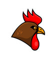 rooster sport team or club logo template design vector image