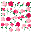 rose clipart vector image vector image