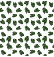 silhouette of leaf trees on white background vector image vector image