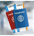 two international passports with tickets on the vector image