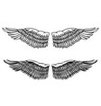 vintage style of eagle wings design element for vector image vector image