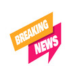 breaking news minimalistic logo icon for news vector image vector image