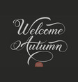 Hand drawn lettering - welcome autumn elegant vector image