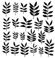 set branch silhouettes with leaves vector image
